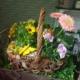 cestino di fiori