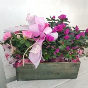 cassetta di legno con fiori
