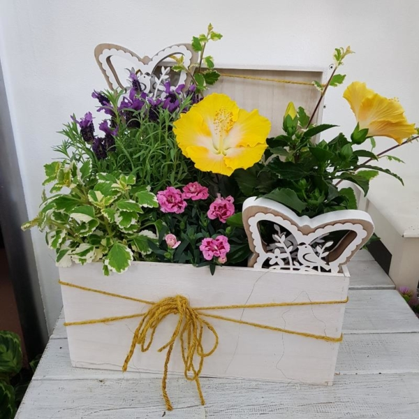 Cassetta con fiori