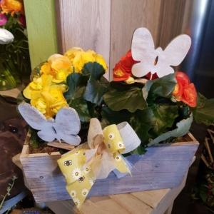 composizione fiori in cassetta